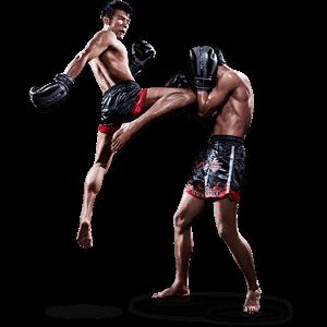 Muay Thai Scuola Fragale